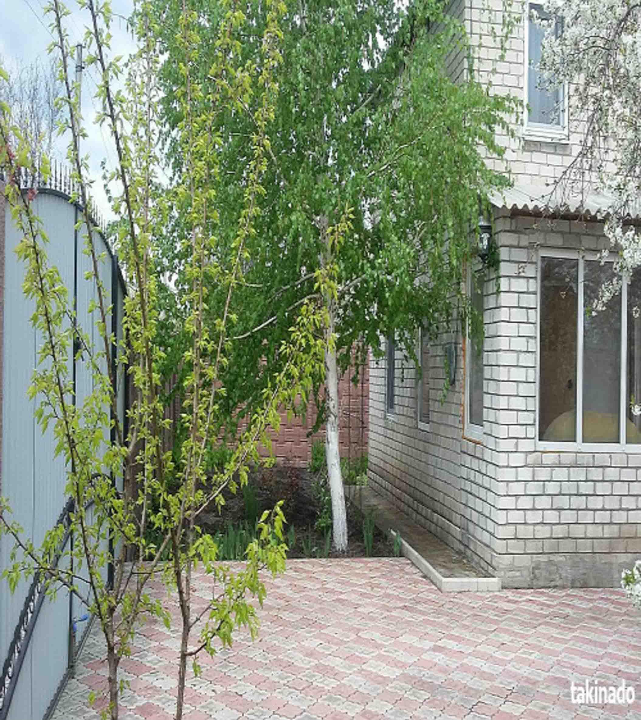 Отдых на Голубых озрах.Красный Лиман, улица Чкалова, 2 фото 5