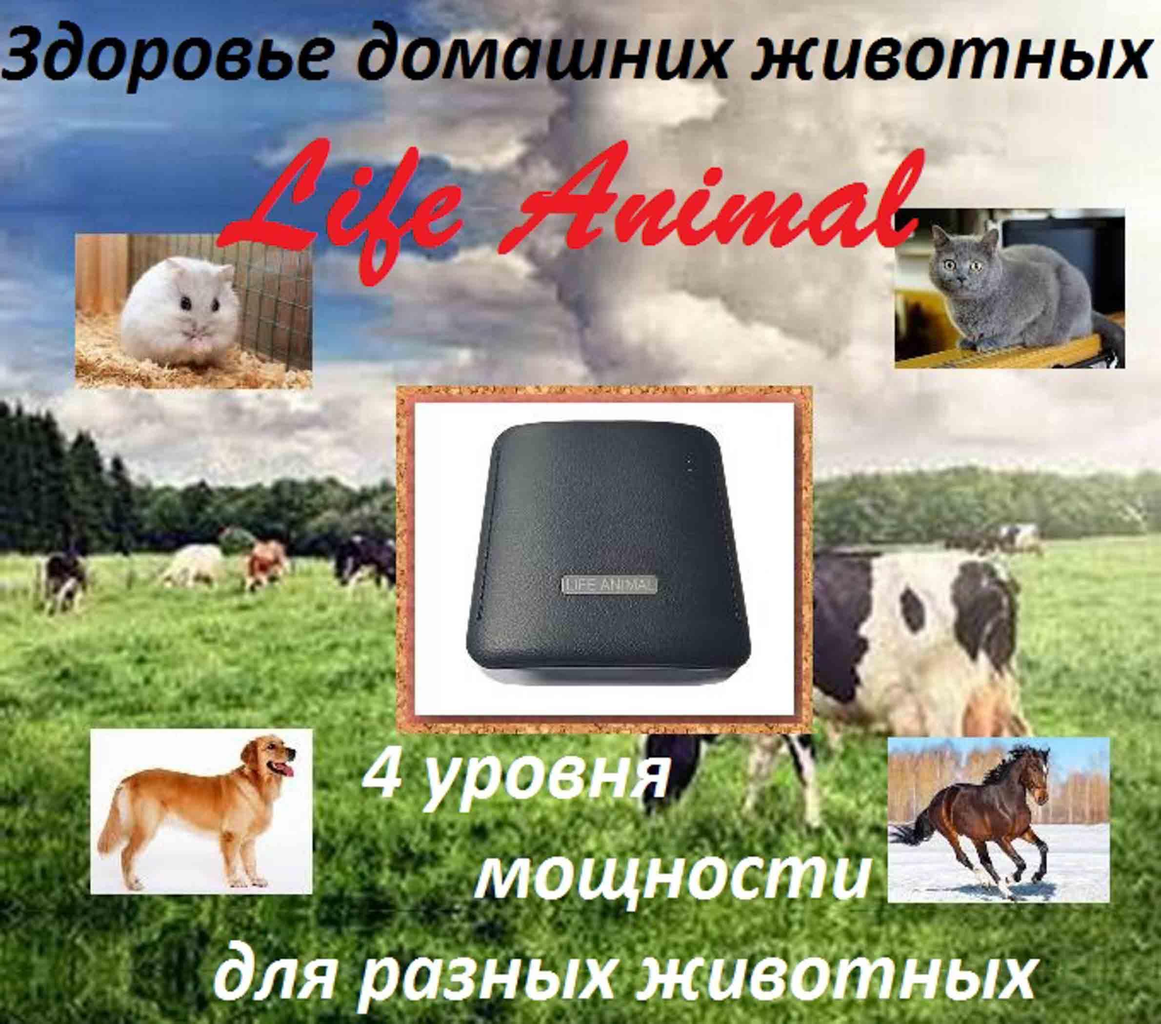 Лечение животных дома прибором Life Animal.  фото 1