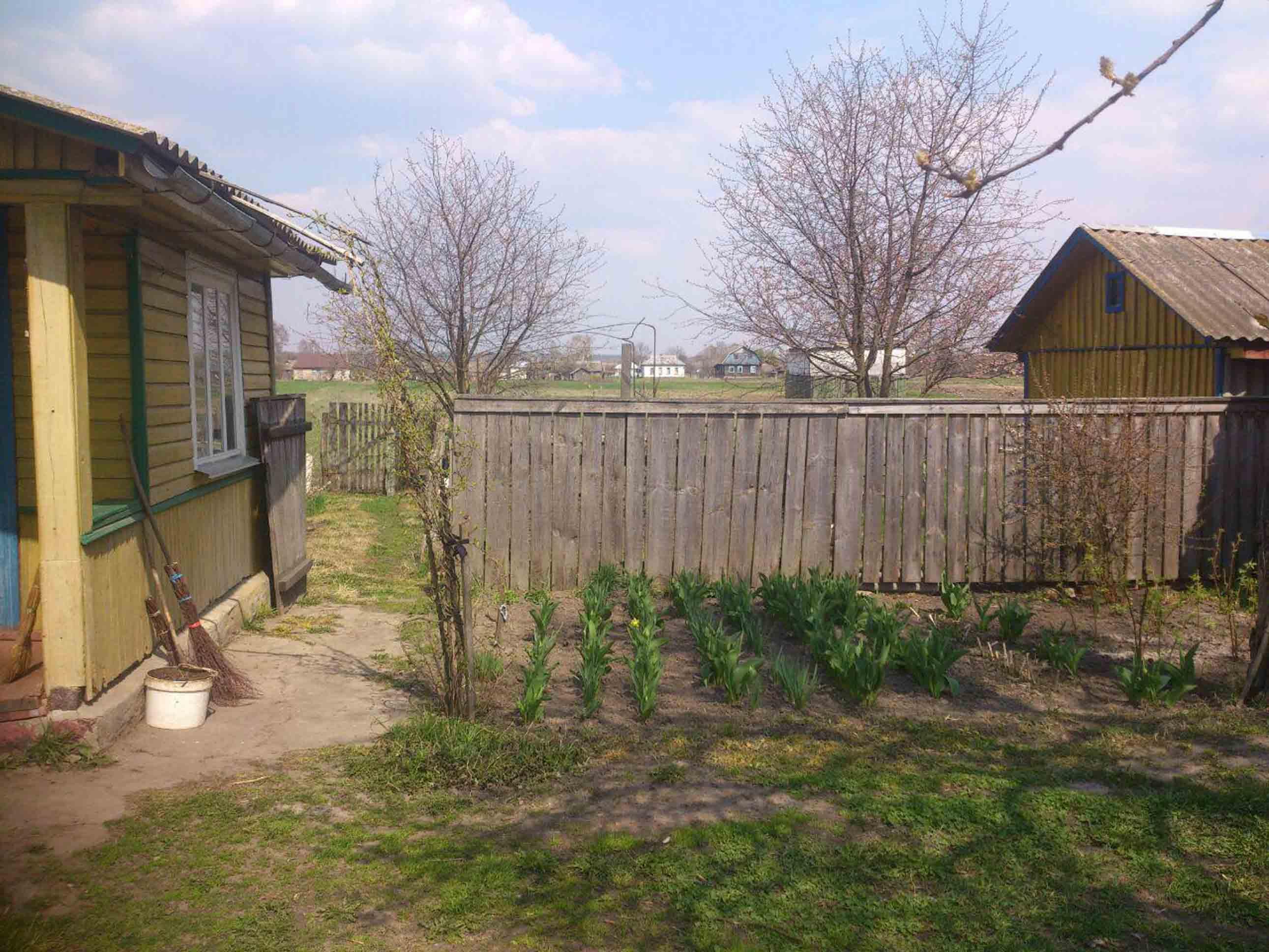 Продам дом в селе фото 2