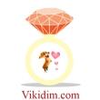 логотип интернет магазина Ювелирная бижутерия - Vikidim